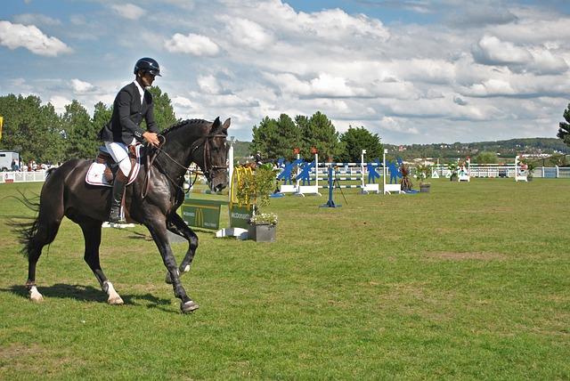 horse rider photo
