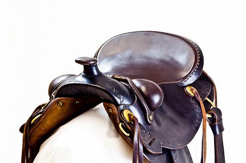 saddle photo