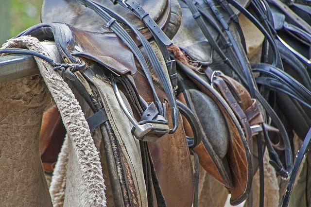 horse riding saddles photo