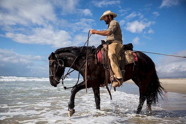 Horse Riding photo