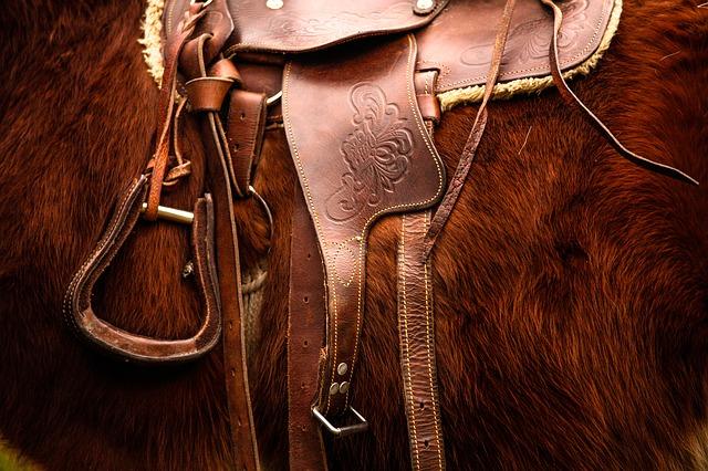 horse saddles photo